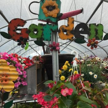 Items to spark up your garden